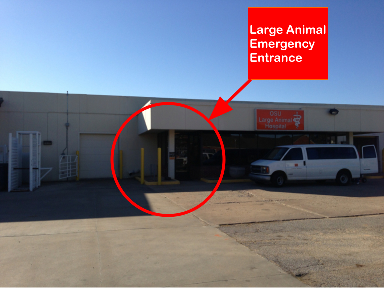 large animal emergency entrance
